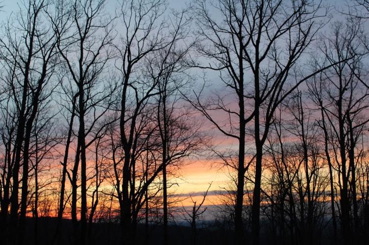 Blog posts 9-19