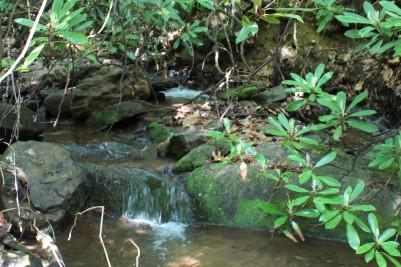 Gurgling Creek