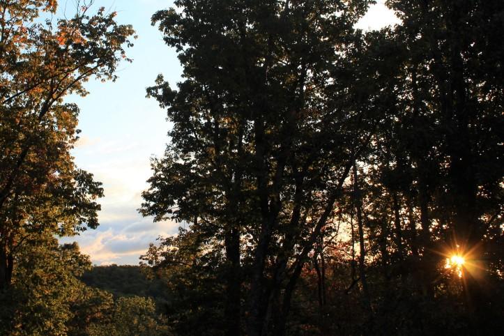 Sunlit Ridge